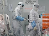 Újabb vitát robbantott a koronavírus eredetével kapcsolatban egy amerikai tudós