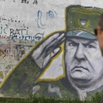 Interpol: Mladics elfogása diadal