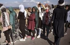 281 ezer menedékkérő kapott védelmet tavaly az EU-ban, Magyarországon 130 fő