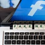 A német szélsőjobb megszállta a németországi közösségi oldalakat