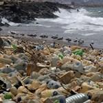 Fordulópont: már többet nyom a Földön a műanyag, mint az élőlények