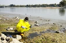 Rákkeltő anyagok a Dunában: a Nemzeti Közműveknek kellene lépnie
