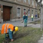 Egyetemi diplomával utcaseprőként dolgoznak