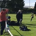 Alpaka rohant a pályára egy angol focimeccsen