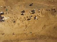 """""""Hihetetlenül ritka"""" lelet: 95 millió éves, 1 méteres lábnyomokat találtak, és most várják az embereket"""