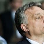 Magyarország számára őrült, a NER-lovagoknak paradés lehet az új év