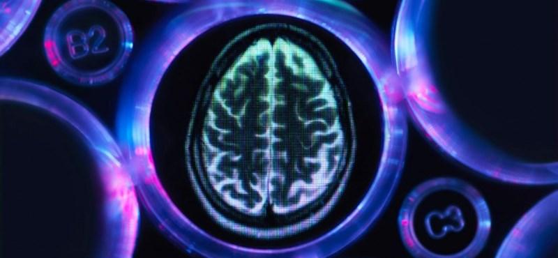 Áttörés lehet, hogy megtalálták összefüggést az Alzheimer-kór és az agyi immunsejtek között