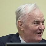 Kiabálni kezdett Mladic, kivezették a tárgyalóteremből – videó