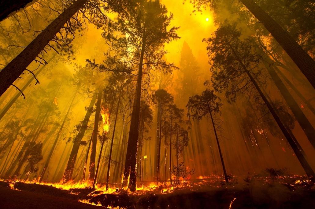 AP - erdőtűz Kaliforniában