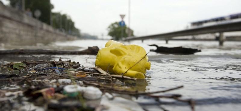 Emberi csontok voltak egy Dunából kiemelt autóroncsban