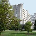 Nagy építkezés lesz Győrben, felsőoktatási-ipari központot hoznak létre