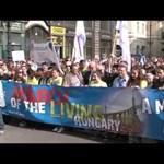 Videó: Nácik unokái kértek bocsánatot az Élet menetén