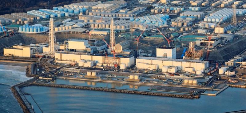 Radioaktív halat fogtak Fukusima közelében