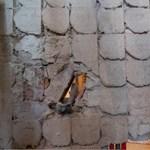 Otthonfelújítási támogatás: gondot okozhat, ha lemarad a számláról a harmadik név