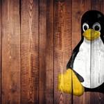 Visszatér a Linux atyja, és állítja: megtanult viselkedni