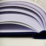 Így juthattok be felsőoktatási szakképzésre: pontok és szabályok