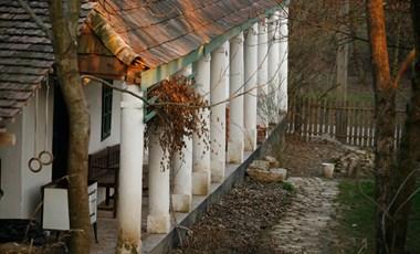 """Négyszáz lelkes nógrádi faluban nyit """"zöld iskolát"""" a Budapest School"""