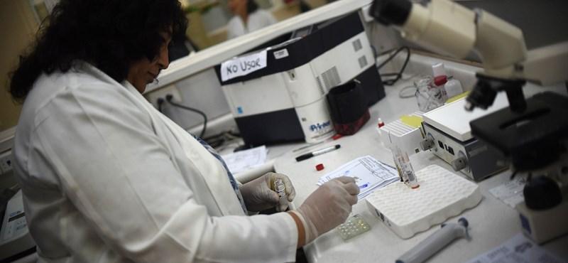 Félelmetes hír a zikavírusról: nem csak szúnyogok terjesztik?