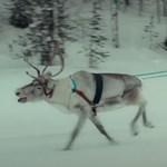 Nyári olimpia Lappföldön? Egyelőre csak vicces videóval figyelmeztetnek a finnek