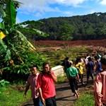 Rizsföldön dolgozókat temetett maga alá a föld Indonéziában