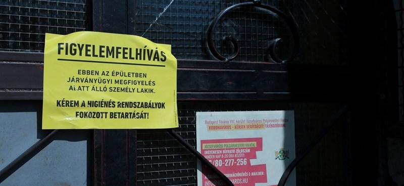 """""""Kerestünk már hallókészülékbe elemet is"""" – önkénteseket kísértünk el a Józsefvárosban"""