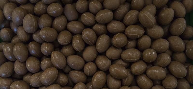 Mi volt előbb: a csokitojás vagy a csokityúk? Diósgyőrben megtudtuk