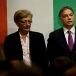 Testvére nemzetbiztonsági kockázat, Oszama Naffa magyar állampolgár