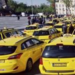 Ezerkétszáz taxist vizsgáltak, 98 hiéna akadt fönt