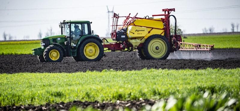 Óriási a munkaerőhiány a mezőgazdaságban