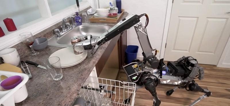 Kidobja a szemetet és elrakja a mosatlant a házi robotkutya – videó