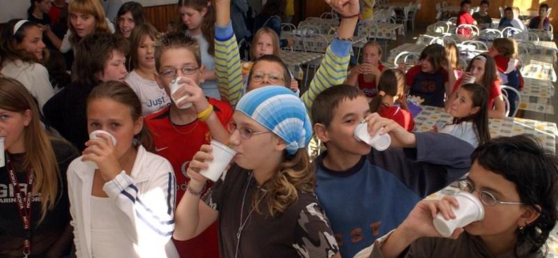 Elnézték az iskolatej programot: sem tej, sem kifli nem jár a romániai diákoknak
