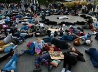 Budapesten is tüntettek a klímaváltozás ellen