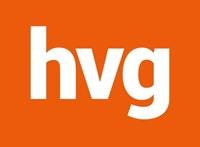 Tapasztalt szoftverfejlesztőt keres a HVG