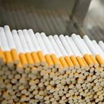 Pécsen épül fel Európa második legnagyobb dohánygyára