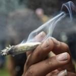 Száműzik a füves cigit Hollandia harmadik legnagyobb városának központjából
