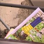 Lebombázott iskola London központjában: látványos figyelemfelhívás