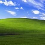 Emlékszik a Windows XP ikonikus háttérképére? A fotós most csinált 3 új képet telefonokra