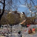 15 ezer pillangó lepte el az Erzsébet teret - fotók
