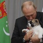 Putyin elmegy az oroszbarát osztrák külügyminiszter esküvőjére