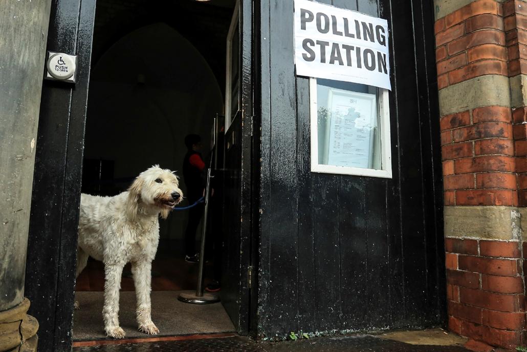 afp.17.06.09. - Egy kutya őrzi a szavazóhelység ajtaját Howdenben  brit választások brit választások 2017