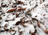Szerdára megint befedi az országot a hó