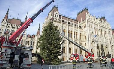 Már áll az ország karácsonyfája – fotók
