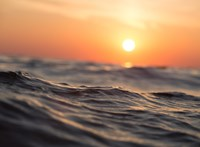 Világrekord az óceántisztításban: 633 búvár dolgozott egyszerre