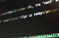 Állami megbízásokon hízó szoftvercégek fúziója készül