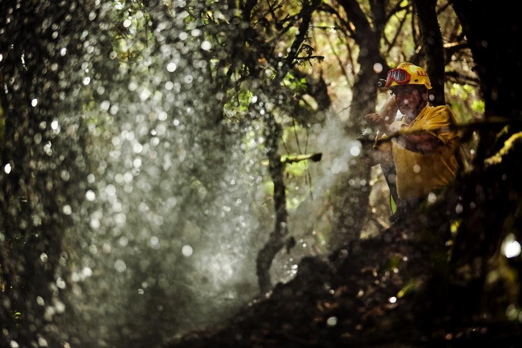 Erdőtűz Spanyolországban: Tenerife, Gomera, valamint az északnyugati Ourense környékén. Spanyolországban többszáz embert evakuáltak, miután tűzvész fenyegeti Európa néhány legisősebb erdőit a Garajonay Nemzeti Parkban