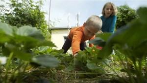 Ahol németek ezrei leltek menedékre a járvány idején – videó