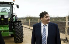 Egyetlen gigavállalatban egyesítik Mészáros Lőrinc két óriáscégét
