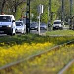 Fotó: sárga szőnyegen siklik az angyalföldi villamos