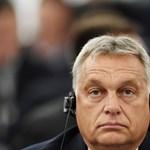 Orbán megmondta Macronnak, hogy háborúznak, de ő fog győzni