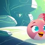 Készüljön a letöltésre: mindjárt itt az új Angry Birds